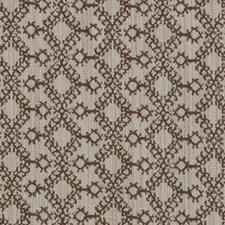 Brown Animal Skins Decorator Fabric by Duralee
