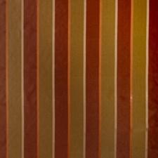 Garden Spice Stripes Decorator Fabric by Trend