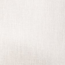 Sand Dollar Texture Plain Decorator Fabric by Trend