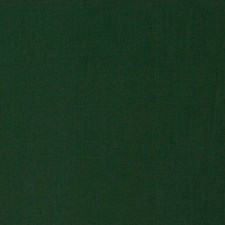 Pine Solid Decorator Fabric by Trend
