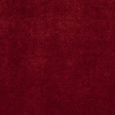 Vino Solid Decorator Fabric by Trend