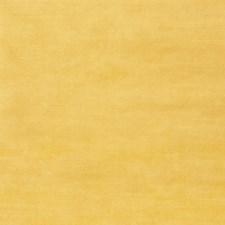 Primrose Solid Decorator Fabric by Stroheim