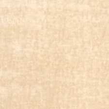 Seashell Solid Decorator Fabric by Stroheim