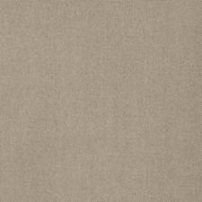 Linden Solid Decorator Fabric by Trend