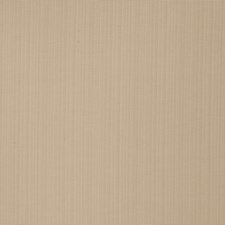 Tusk Solid Decorator Fabric by Trend