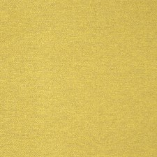 Gold Solid Decorator Fabric by S. Harris