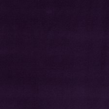 Violet Solid Decorator Fabric by Stroheim