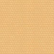 Beige Decorator Fabric by Brunschwig & Fils