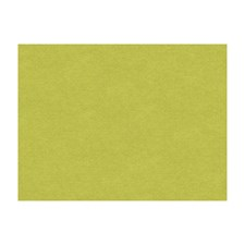 Peridot Solids Decorator Fabric by Brunschwig & Fils