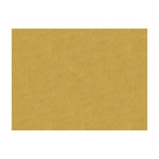 Lichen Solids Decorator Fabric by Brunschwig & Fils
