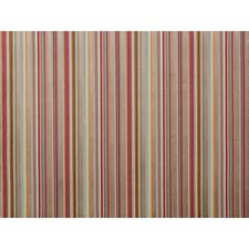 Aqua/Pink Stripes Decorator Fabric by Brunschwig & Fils