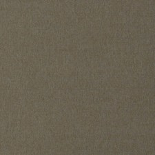 Fossil Texture Plain Decorator Fabric by Trend