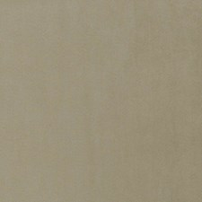Dune Solid Decorator Fabric by Trend