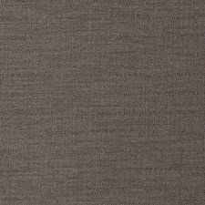 Graphite Solid Decorator Fabric by Trend