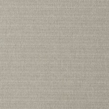 Limestone Solid Decorator Fabric by Trend