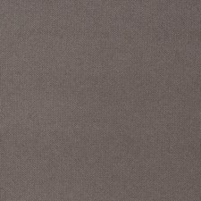 Gull Texture Plain Decorator Fabric by Trend