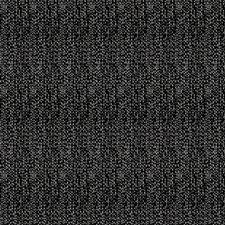 Zebra Animal Decorator Fabric by Stroheim