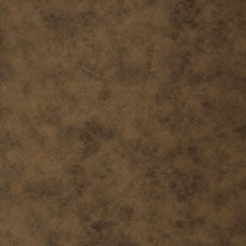 Sepia Solid Decorator Fabric by Trend