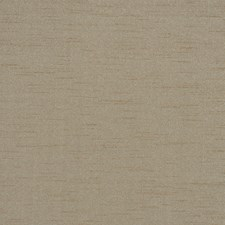Sable Solid Decorator Fabric by Trend