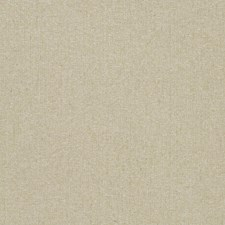 Champagne Sheen Texture Plain Decorator Fabric by Trend
