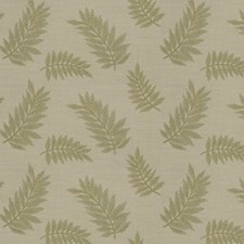 Fern Embroidery Decorator Fabric by Fabricut