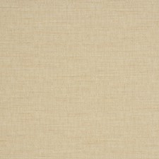 Birch Texture Plain Decorator Fabric by Trend