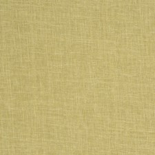 Pear Solid Decorator Fabric by Trend