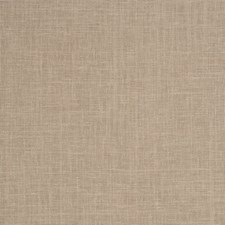 Fawn Solid Decorator Fabric by Trend