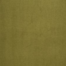 Palm Solid Decorator Fabric by Trend