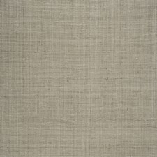 Chinchilla Solid Decorator Fabric by Stroheim
