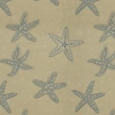 Beige/Light Blue Novelty Decorator Fabric by Kravet