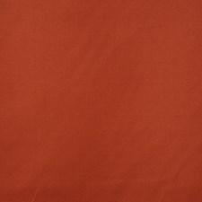 Carotene Decorator Fabric by RM Coco