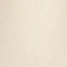 Cream Decorator Fabric by Scalamandre