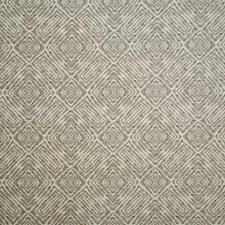 Ash Contemporary Decorator Fabric by Pindler