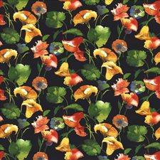 Raven Decorator Fabric by Kasmir