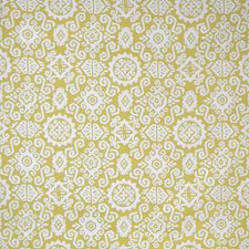 Citron Decorator Fabric by Silver State