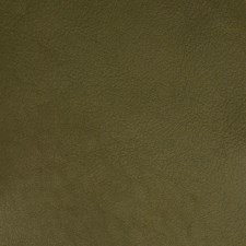 Bamboo Solid Decorator Fabric by Greenhouse