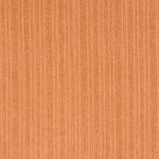 Burnt Orange Solid Decorator Fabric by Greenhouse