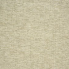 Hemp Solid Decorator Fabric by Greenhouse