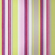 Fuchsia/Lime Decorator Fabric by Scalamandre