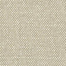 Abalone Decorator Fabric by Scalamandre