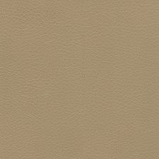 Clay Decorator Fabric by Silver State