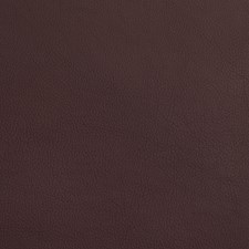 Wine Decorator Fabric by Silver State