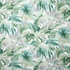 Palm Traditional Decorator Fabric by Pindler