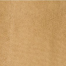 Praline Skins Decorator Fabric by Kravet