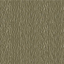 Silver Animal Skins Decorator Fabric by Kravet