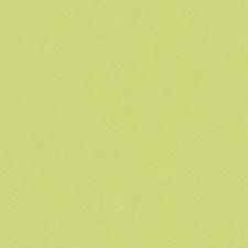 Celery Solids Decorator Fabric by Brunschwig & Fils