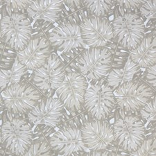 Sand Dollar Decorator Fabric by Silver State