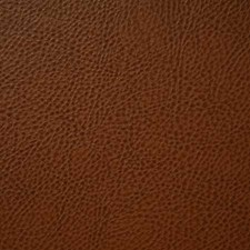 Saddle Decorator Fabric by Pindler