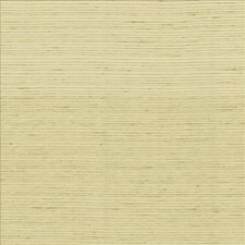 Cotton Decorator Fabric by Kasmir